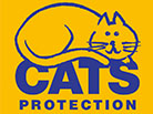 Cats Protection: How you can help